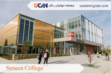 معرفی کالج های معتبر تورنتو ، کالج سنکا ( Seneca College )